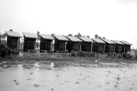 시뜨웨 외곽 로힝야/무슬림 피난민 (IDPs) 캠프내 공동 화장실. (Photo © Lee Yu Kyung 2013)