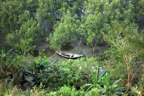 버마 아라칸 주와 국경을 가르는 나프강가 숲지대. 마웅도에서 피난온 보트피플들이 도착하는 지점과 멀지 않은 이곳은 이미 몇몇 로힝야 난민들의 피난처가 되고 있다. 국경 수비대의 순찰에도 불구하고 거의 매일 두 세 가족이 도착한다는 게 인근 주민들 (대부분 로힝야)의 귀띔이다. (Photo © Lee Yu Kyung)